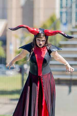 Renegade Review 2016