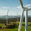 FLM Renewable 07