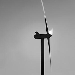 Wind #5