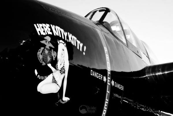 #55, Here Kitty Kitty F7F-3 Tigercat Pilot Stewart Dawson Celina, TX  Unlimited Class