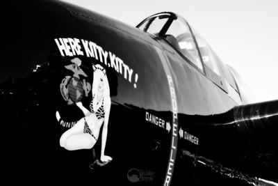 #55, Here Kitty Kitty F7F-3 Tigercat Pilot Stewart Dawson Celina, TX  Unlimited Class