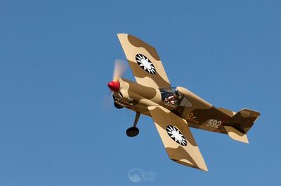 Tony the Tiger, Race 592