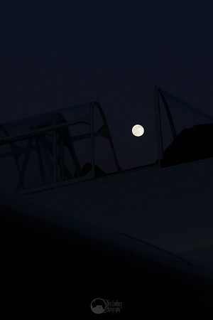 Moon through the Canopy. T-6 Pace Plane