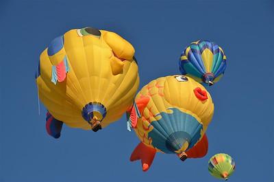 Fish Balloons