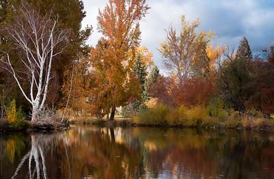 Fall at Idlewild