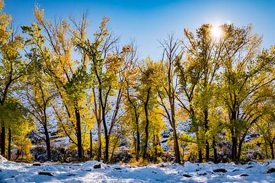 Mayberry Park Reno NV