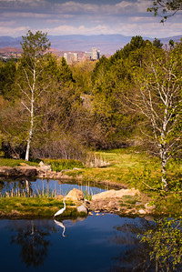 Reno Skyline from Caughlin Ranch
