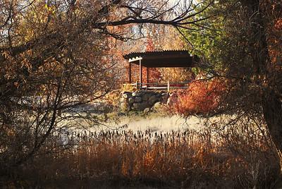 Fall at Rancho San Rafael, 2008