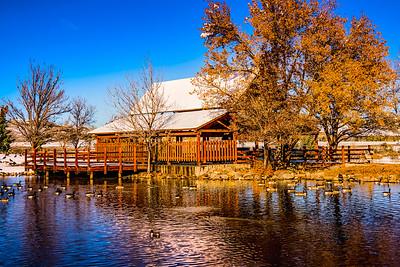 Rancho San Rafael in Early Winter