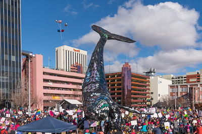 Reno Plaza Womens March 2018