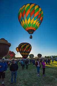 Balloon Races 2016- 1717