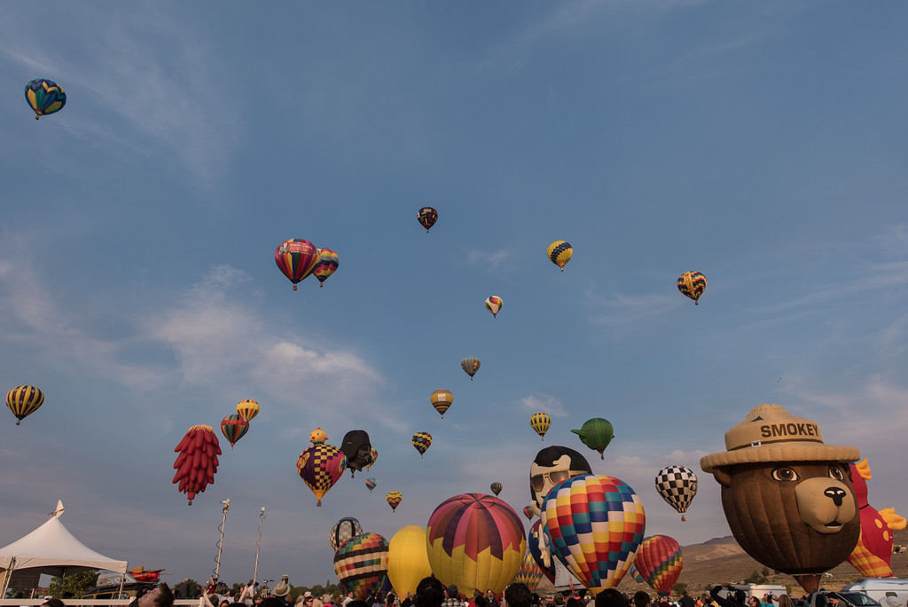 The biggest free balloon show in the country, or that's what they say. Lots of balloons went up, that's for sure.