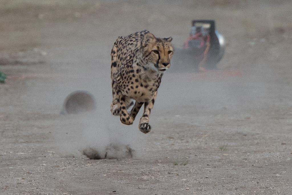 Full speed..