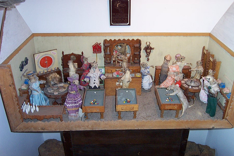 This oddity was in a different museum on the city's main street.<br /> [Virginia City, South of Reno]