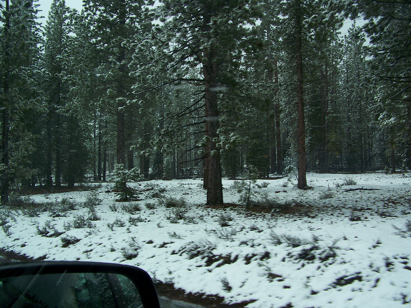 Then we go up the next ridge, and there's more snow on the ground!<br /> [On the road to Reno, in Northern California]