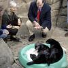 Sea Otter Legislation