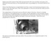 Steering Box Reconditioning (by Vaughn Gunthorp) - Pg. 5