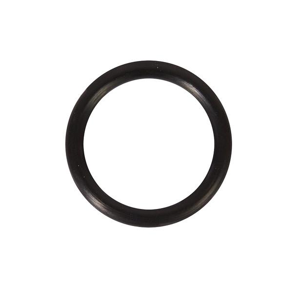 BNP Gun O-ring