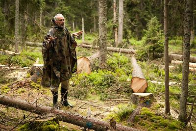 """""""Tak tady ukrajinští pracovníci neodborně pokáceli stromy. Jak je vidět, neuměli ani směrově kácet, takže pokácené stromy spadaly na mladé stromky, které se zde chystaly přirozeně nahradit napadené stromy."""""""