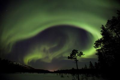 Aurora 9