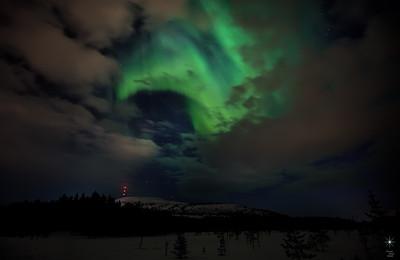 Aurora 15