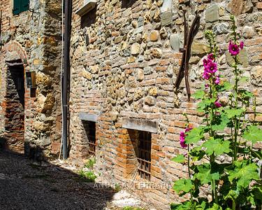 Castello di Serravalle - Valsamoggia - AC Factory laboratorio Reportage e Racconto fotografico - 06