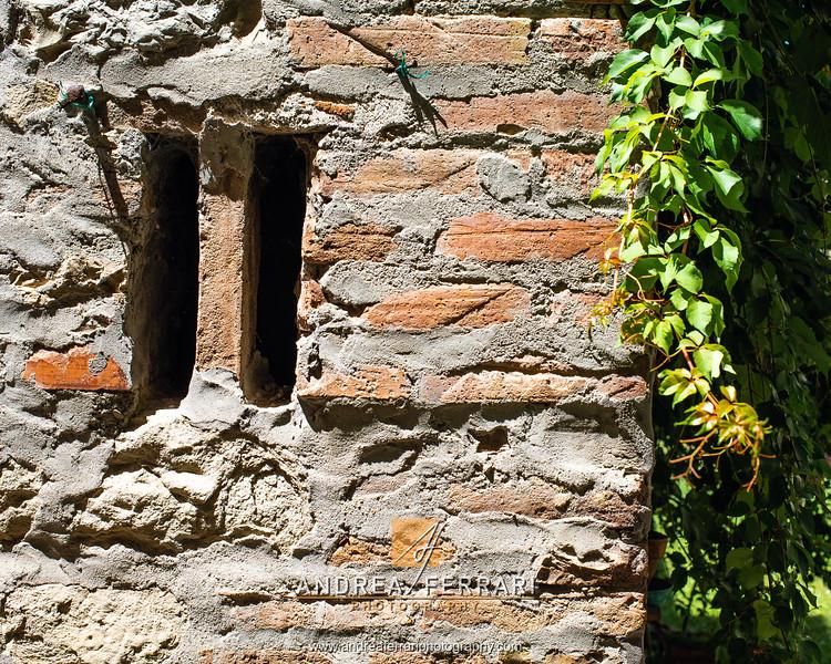Castello di Serravalle - Valsamoggia - AC Factory laboratorio Reportage e Racconto fotografico - 05