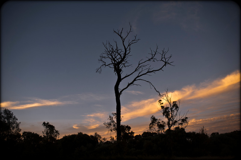 We travelled back through Tara, passing through at dusk, headed back to Dalby.