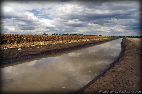 Irrigation channels
