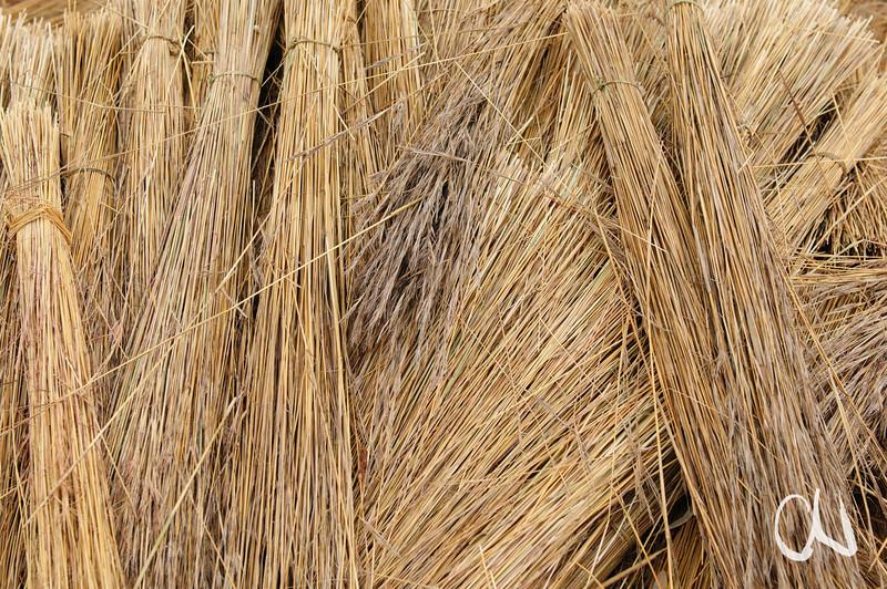 Gras zum Decken von Dächern, Thatch-grass, Krüger Nationalpark, Kruger National Park, Südafrika, South Africa