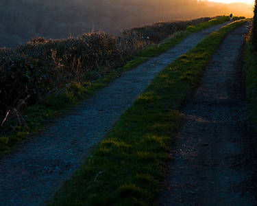 The track into Turleigh at sunset.
