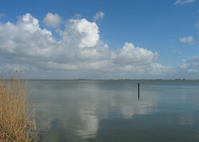 The Goudzee from Hemmeland, near Monnickendam