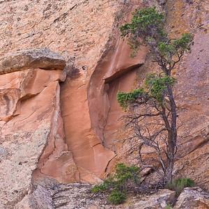 Rock face, Arches National Park, Utah.