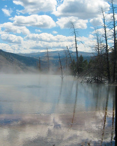 Steaming pond, Mammoth Hot Sprints, Yellowstone