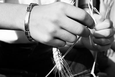 Il grano è ancora simbolo di prosperità e benessere