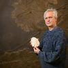 Prof. Dr. James Nebelsick, Geowissenschaften/Invertebratenpaläontologie und Paläoklimatologie, Bionik-Forschung an Sanddollars, Universität Tübingen, Deutschland