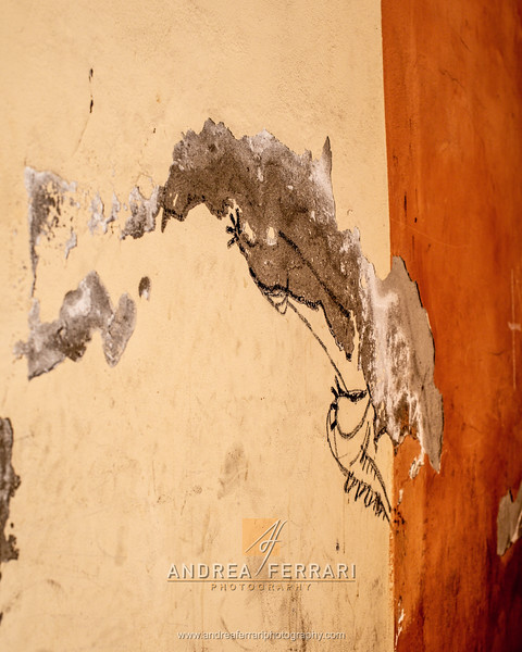 Via Carteria - Modena - AC Factory laboratorio Reportage e Racconto fotografico - 06