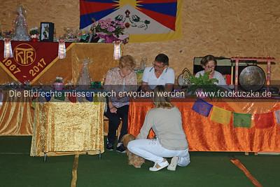Zuchtschau Socke 25 08 20180008