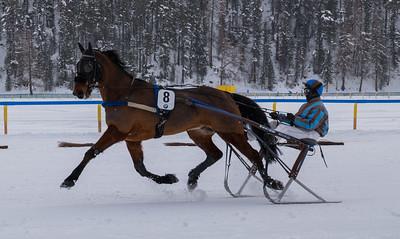 """Das White Turf (""""Weisser Torf"""") hat eine lange Tradition. Das erste Rennen fand bereits 1906 statt."""