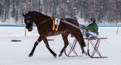 An drei Rennsonntagen im Februar strömen über 35'000 Zuschauer auf den zugefrorenen St. Moritzersee, um spannende Szenen und unterhaltsame Events vor einer grandiosen Kulisse, inmitten der Engadiner Bergwelt zu verfolgen.