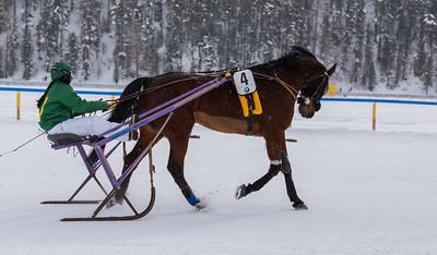 Edle Vollblutpferde aus ganz Europa und internationale Jockeys begeistern während der Rennen beim White Turf in St. Moritz alljährlich Gäste aus aller Welt.