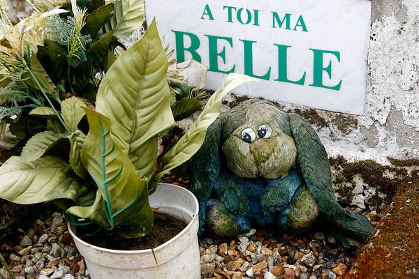Photographe professionnel de reportage à Lyon, Rhône-Alpes,  France. Reportages, portraits, vidéo. Photos d'un cimetière pour animaux de compagnie.