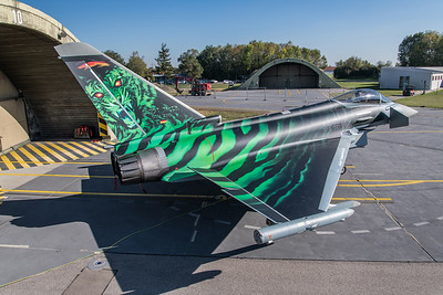 German Air Force TLG74 / Eurofighter Typhoon / 31+00 / Ghost Tiger
