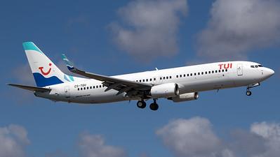 TUI (EuroAtlantic Airlines) / Boeing 737-800 / CS-TQU