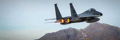 US Air Force / F15 / AF84015