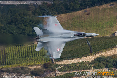 Swiss Air Force / McDonnell Douglas F/A-18C Hornet / J-5019