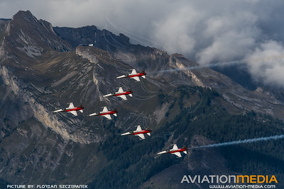 Swiss Air Force / Northrop F-5E Tiger II / Patrouille Swiss Livery