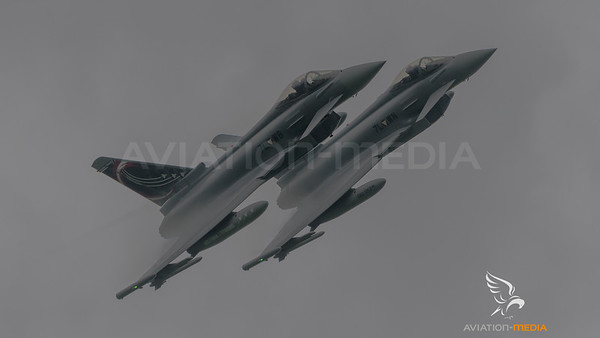 Austrian Air Force 1st Squadron / Eurofighter Typhoon / 7L-WB & 7L-WN / Special Livery