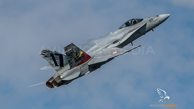 Swiss Air Force 11th Squadron / McDonnell Douglas F/A-18C Hornet / J-5017 / Tiger Livery