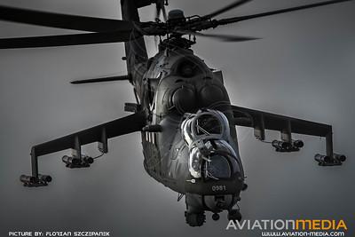 Czech Air Force / Mil Mi-24V Hind E / 0981